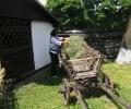 tabara-oglinzi-2011-587